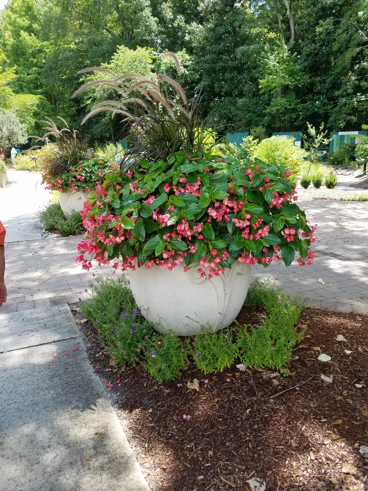 New Hanover Arboretum – Wilmington,NC