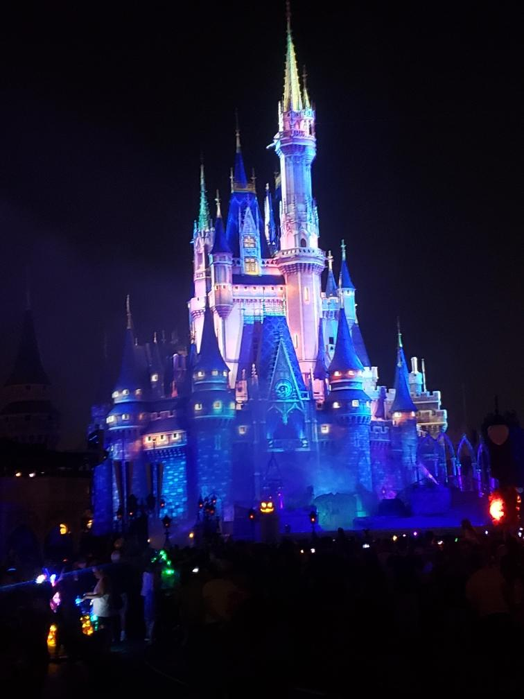 Our Disney Vacation came to anend